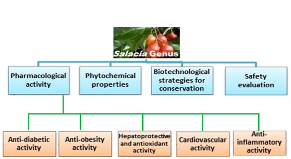 Phyto Constituents Pharmacological Properties And Biotechnological