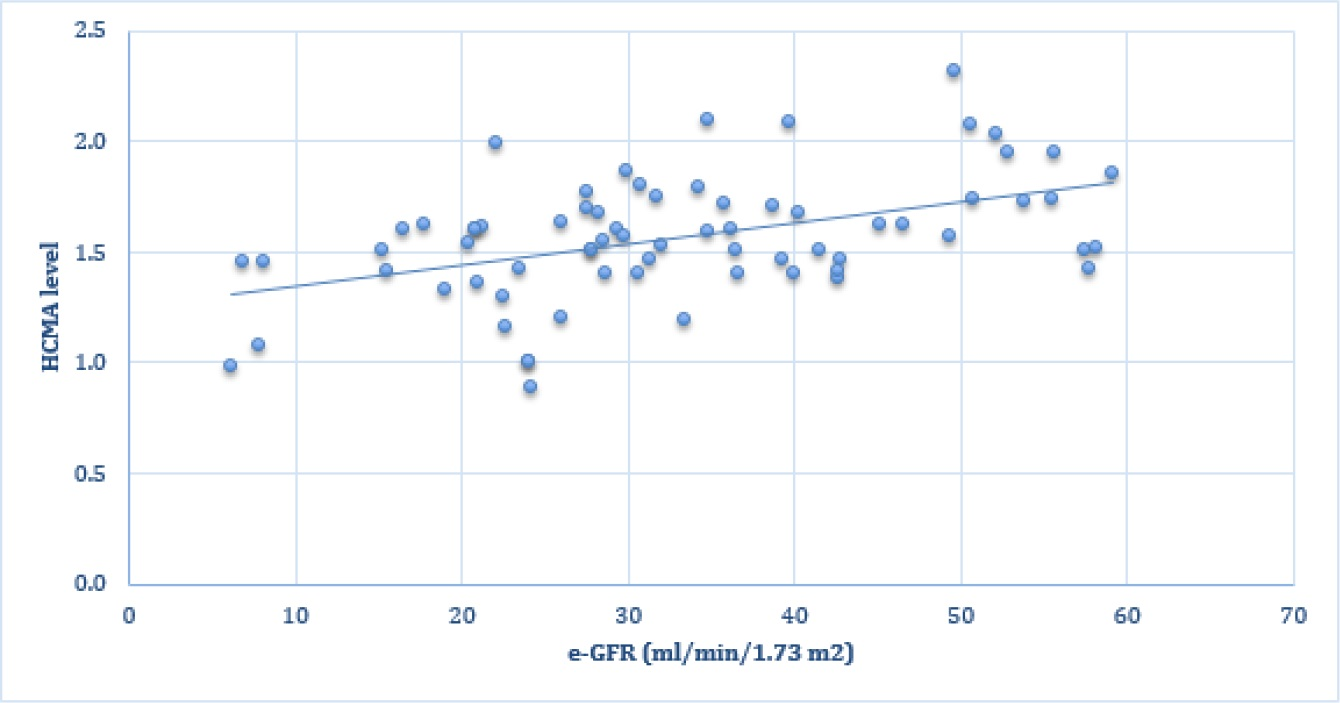 Correlation of Hyperchloremic Metabolic Acidosis and Renal
