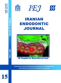 makrotápanyagok aránya az endomorf zsírvesztéshez)