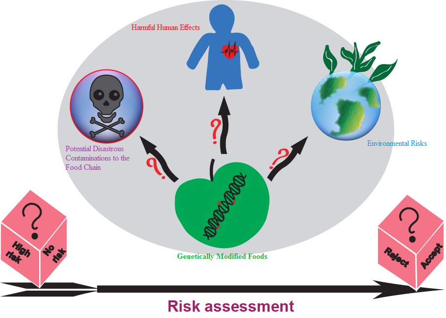 Genetically Modified Foods: Promises, Challenges and Safety Assessments |  Applied Food Biotechnology